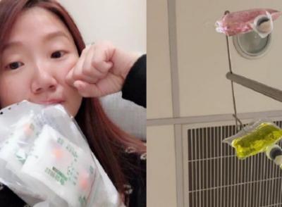 「陶晶瑩送醫」疑中毒腹痛狂吐,近況曝光網都哭了