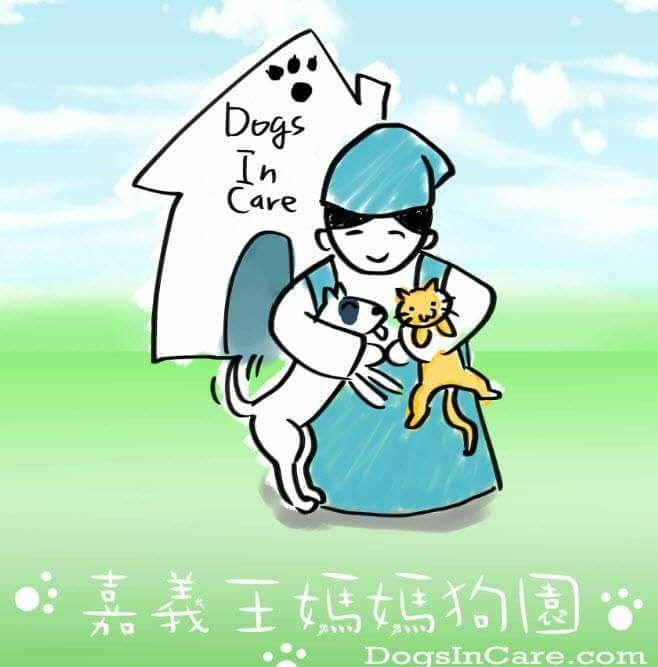 「嘉義狗園」大眾一起行善救救流浪狗,讓牠們過得更好