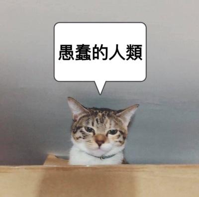 「高雄歌界女神」宋本丸,婚禮最愛用的主持人
