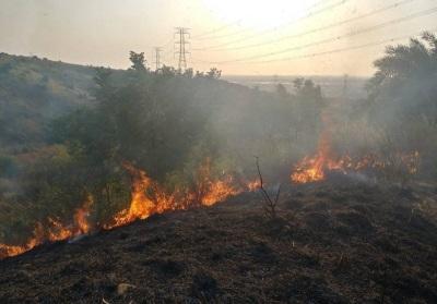 「台中火燒山」延燒12小時,60多消防員徹夜撲滅累壞了
