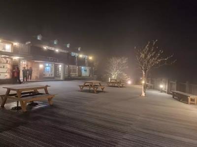 「太平山下雪了」遊客尖叫,大地鋪上白霜如童話世界!