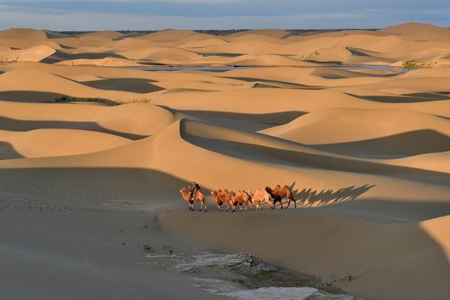 DSC_6039a.JPG - 蒙古胡楊林及沙漠