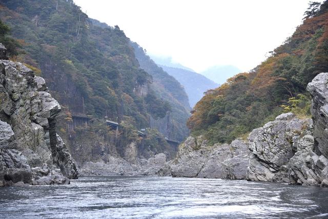 DSC_6501.JPG - 2016日本四國旅遊