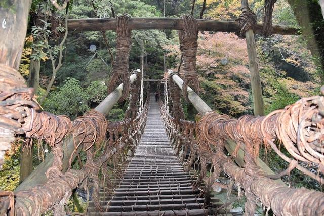 DSC_6551.JPG - 2016日本四國旅遊