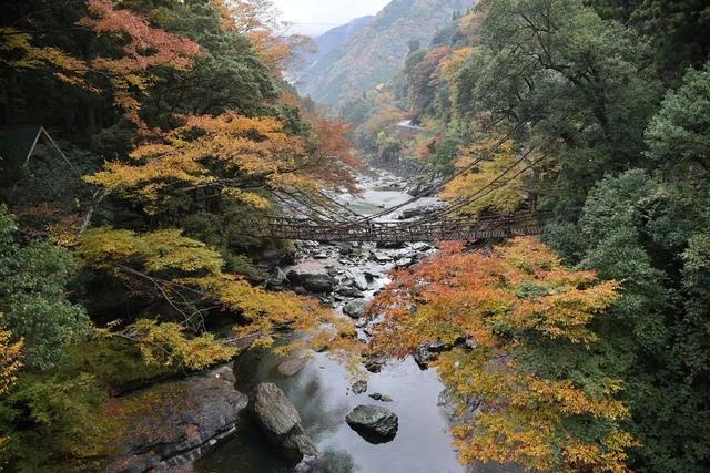 DSC_6527.JPG - 2016日本四國旅遊