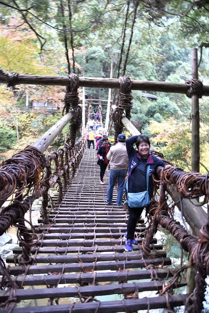 DSC_6537.JPG - 2016日本四國旅遊