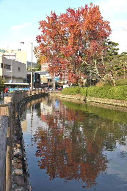 DSC_6784.JPG - 2016日本四國旅遊