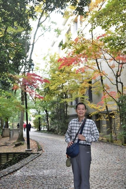 DSC_6832.JPG - 2016日本四國旅遊