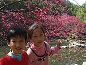收集100個幸福寶貝的笑容:雨宸+昀昕