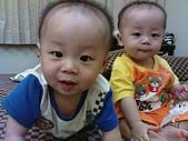 收集100個幸福寶貝的笑容:花田兄弟