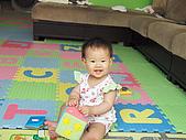 收集100個幸福寶貝的笑容:小小兔