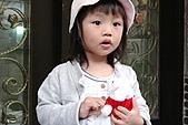 QQ小寶貝(2Y4M-2Y5M):