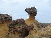 野柳。地質公園:DSC00018.JPG