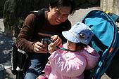 2009關西賞櫻:IMG_8917_調整大小.JPG