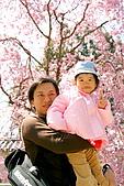 2009關西賞櫻:IMG_8928_調整大小.JPG