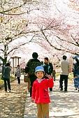 2009關西賞櫻:IMG_8989_調整大小.JPG