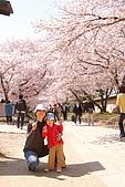 2009關西賞櫻:IMG_9025_調整大小.JPG