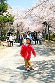 2009關西賞櫻:IMG_9070_調整大小.JPG