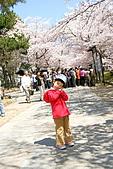 2009關西賞櫻:IMG_9077_調整大小.JPG