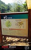 童話世界-竹坑溪步道:IMGP2452.jpg
