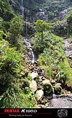 童話世界-竹坑溪步道:IMGP2473.jpg