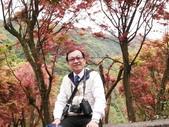 台北奧萬大+淡水紫藤咖啡花園2013.3.10:SAM_5189.jpg