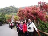 台北奧萬大+淡水紫藤咖啡花園2013.3.10:SAM_5222.JPG