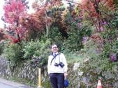 台北奧萬大+淡水紫藤咖啡花園2013.3.10:SAM_5250.JPG