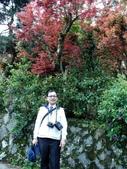 台北奧萬大+淡水紫藤咖啡花園2013.3.10:SAM_5251.jpg