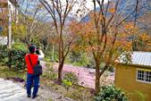 宜蘭-明池2014.12.17: