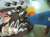 格友好禮相送:貝殼的禮物13