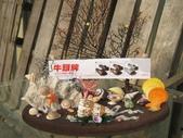 格友好禮相送:貝殼的禮物15