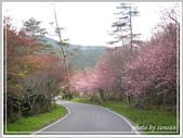 2013寒假山見花好旅遊網誌照片:IMG_0087.jpg