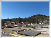 2013寒假山見花好旅遊網誌照片:IMG_0289.jpg