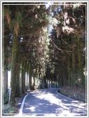 2013寒假山見花好旅遊網誌照片:IMG_0335.jpg