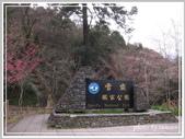 2013寒假山見花好旅遊網誌照片:IMG_0139.jpg