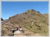 2013寒假山見花好旅遊網誌照片:IMG_0350.jpg