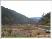 2013寒假山見花好旅遊網誌照片:IMG_0045.jpg