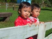 兒童寫真:DSCF6490.JPG