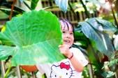 兒童寫真:DSCF8821.jpg