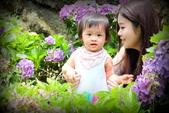 嬰兒寫真:DSCF6436.JPG