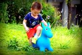 兒童寫真:DSCF5592.JPG