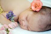 新生兒:DSCF7887.jpg