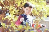 兒童寫真:DSCF4284.jpg