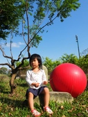 小妹成長記錄:DSCF8017.JPG