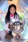 寵物寫真:DSCF7030.JPG