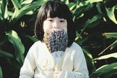 兒童寫真:DSCF4641.jpg