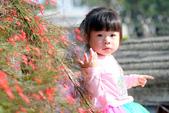 兒童寫真:DSCF1325.JPG