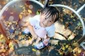 兒童寫真:DSCF8966.JPG