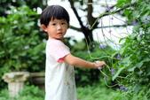 兒童寫真:DSCF3493.JPG